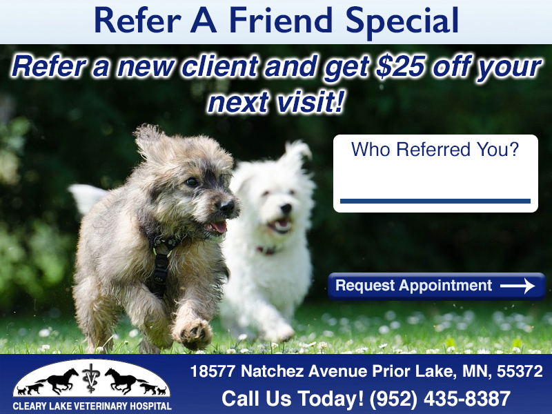 clearylakereferralspecial