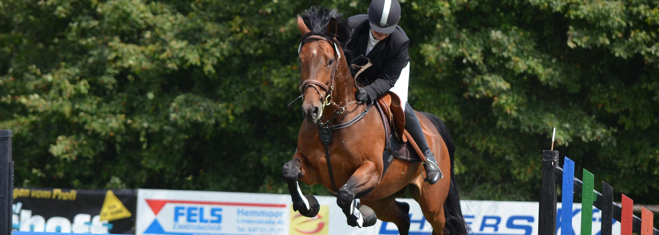 slide-horse2