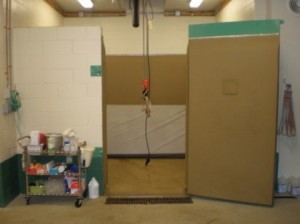 Equine induction/recovery stall with crane