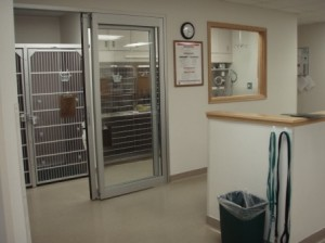 Small Animal Intensive Care Unit (ICU)